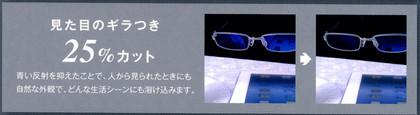 20121130seeclearbluepremium03