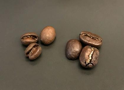 20190202chocolat_peberry_03