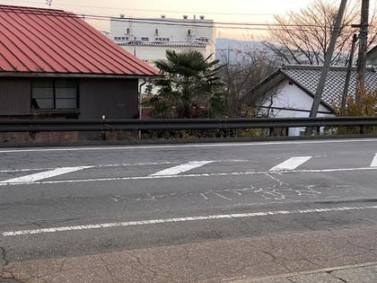 20201118noon_lens_02